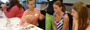 10 dinámicas de grupo de trabajo en equipo para empresas