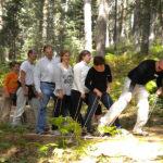 Qué es el outdoor training para empresas