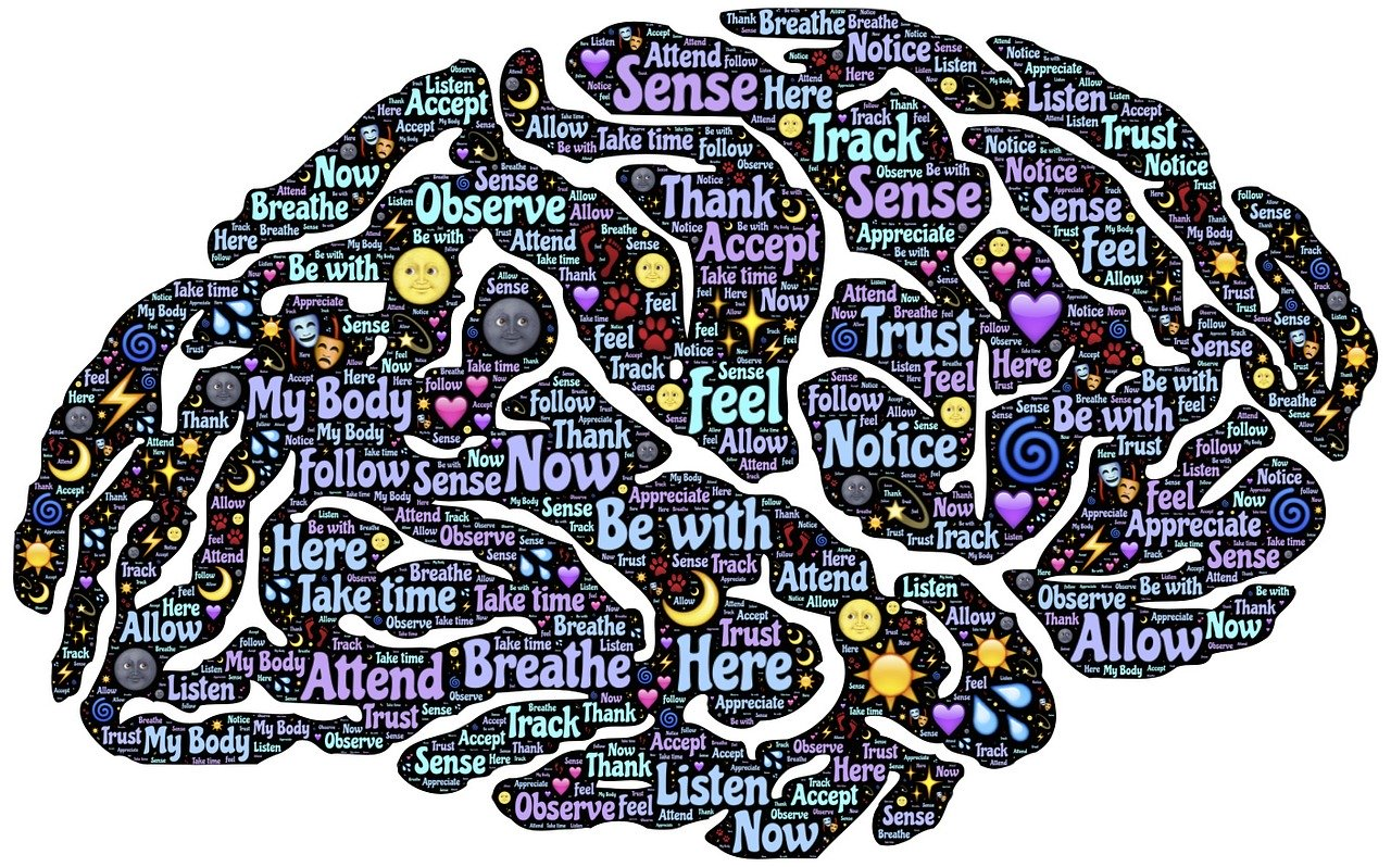 cerebro empatico